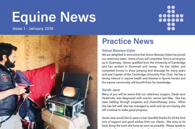 Equine Newsletter