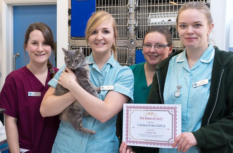 Pet Hero Award Catrina