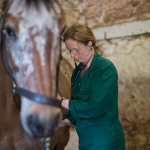 Sarah-Jane Heathcoate - Equine Health Club
