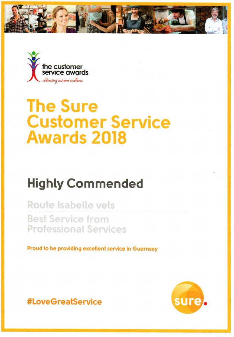 Sure Customer Service Award 2018